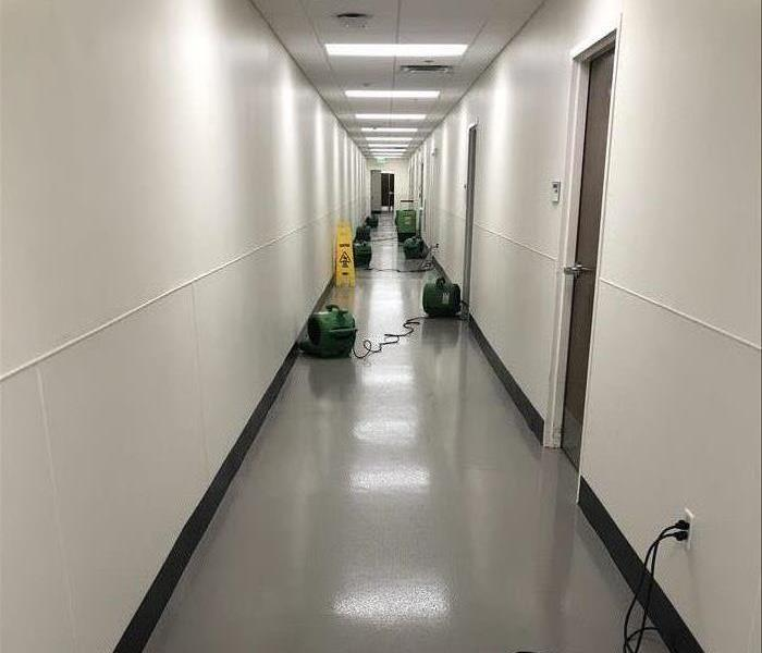 Image shows long hallway with green fans plugged into the walls.