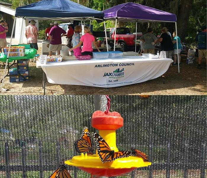 Arlington Council JaxChamber, Tree Hill Butterfly Release, April 2017
