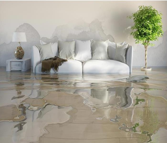 Water Damage What is water damage remediation?