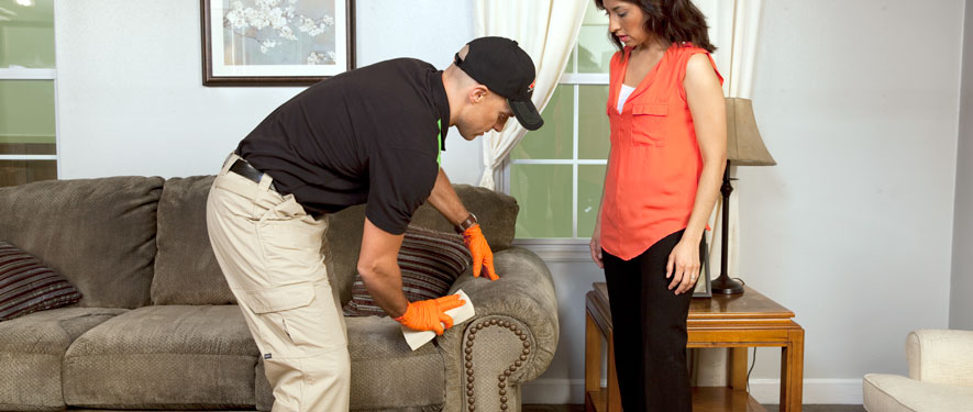 Jacksonville, FL carpet upholstery cleaning